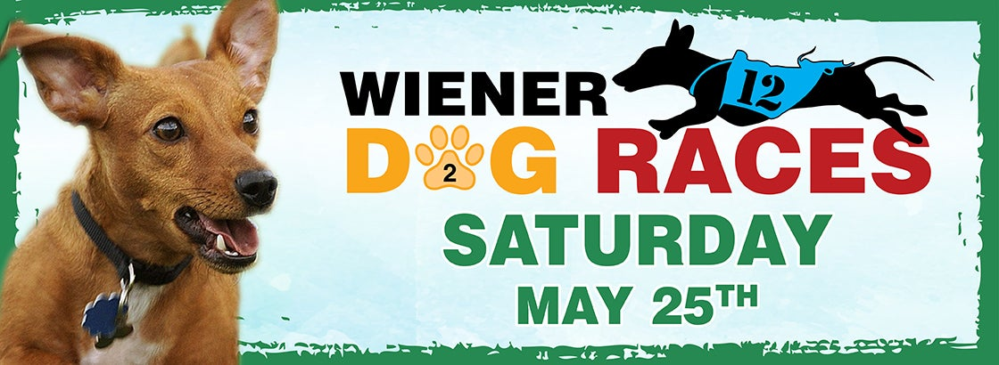 2019-WIENER.DOG.RACES.1120X410-2.jpg