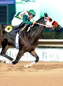 JRC Callas First - Harris County Stakes-THUMBNAIL.jpg