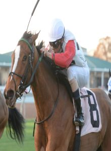 Sully's Dream - Houston Distaff.jpg