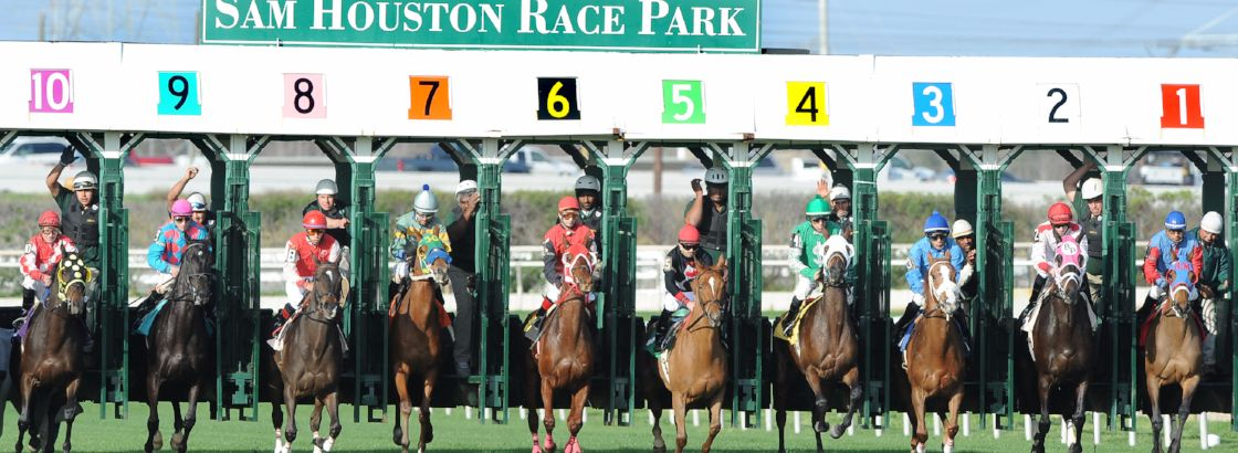 Turf Course Start- feature.jpg