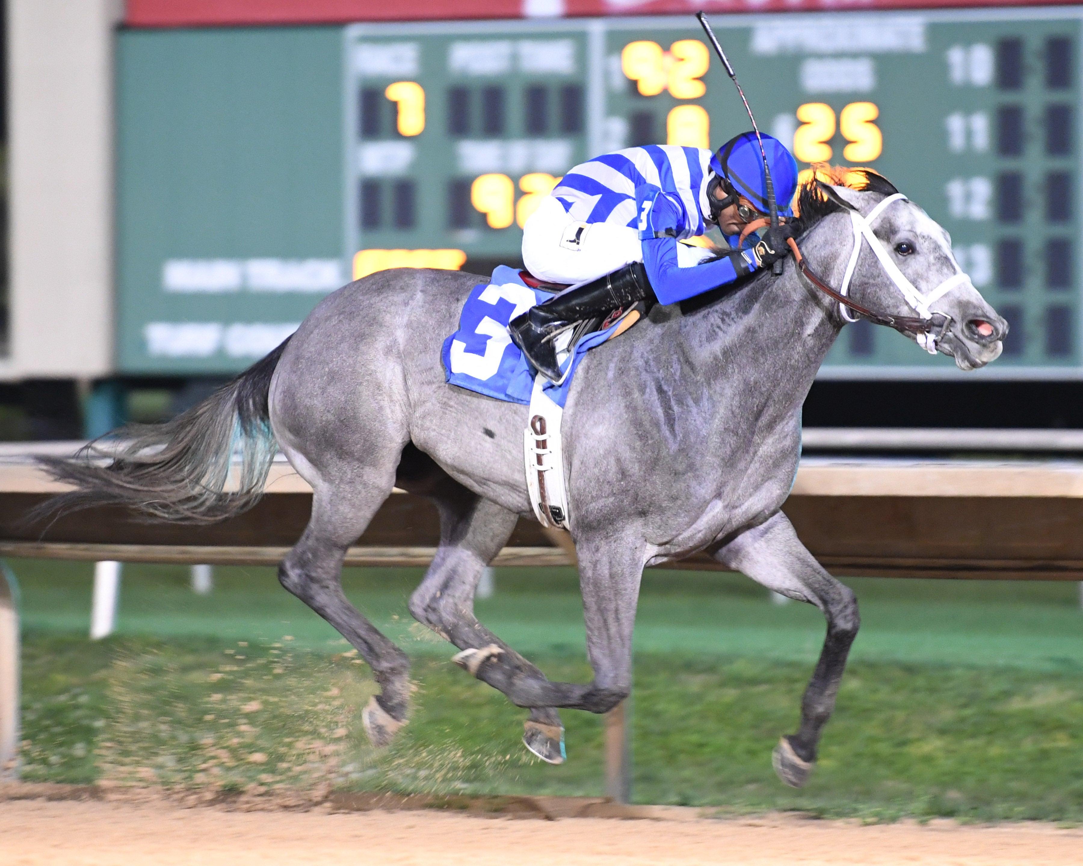 Two Altazano Stakes-Archer City 2.jpg